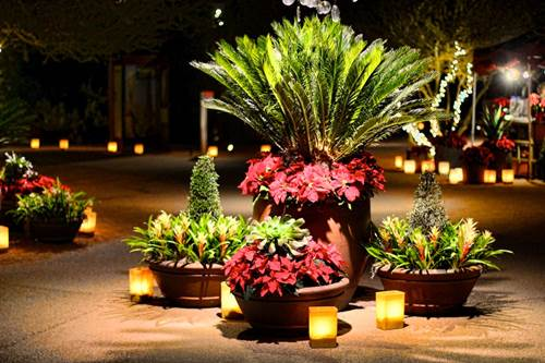 Garden Lights and Candles