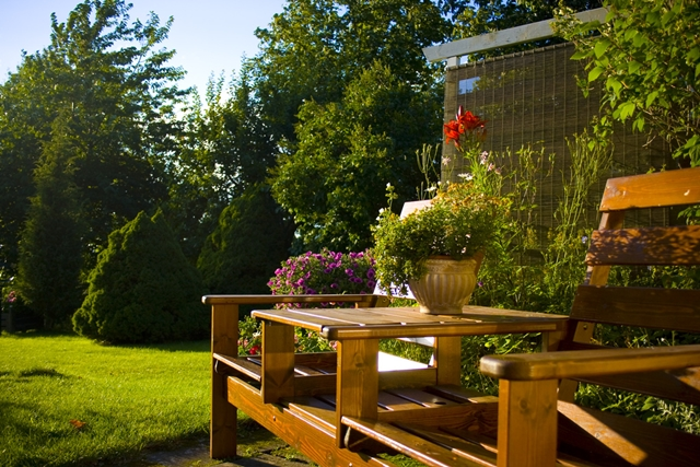 4 Unique Ideas to Add Character to Your Backyard 1