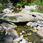 Build Your Own Garden Dream Stream