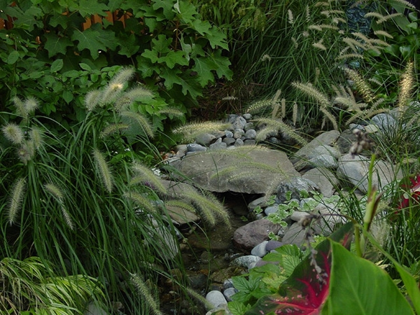 Build Your Own Garden Dream Stream 6