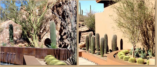 Landscape Design Ideas For The Desert 5