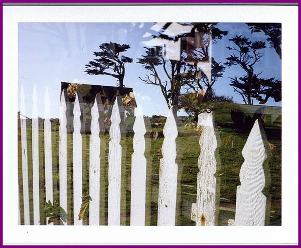 Good Fences Make Great Neighbours - Set Your Boundaries 1