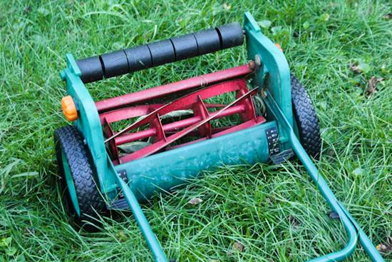 Tips and Tools for Mowing Your Lawn 5