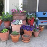 Homes Switching to Portable Gardens