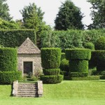 How to Keep Your Lawn Clean and Beautiful in the Summer