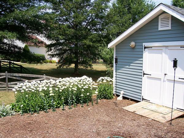 Build Your Dream Shed On A Budget 8