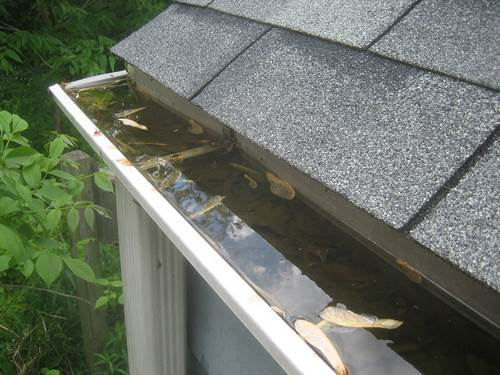 Three Tips For Keeping Your Roof And Gutters In The Best Shape Possible 4