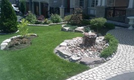 The Pros And Cons Of Cultivating A Perfect Lawn