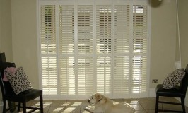 Exterior Door Shutters - Giving a Spectacular Look to Your House 1