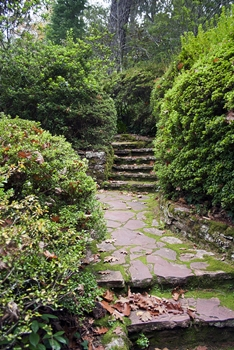 4 Unique Ideas to Add Character to Your Backyard 2 - Garden Path